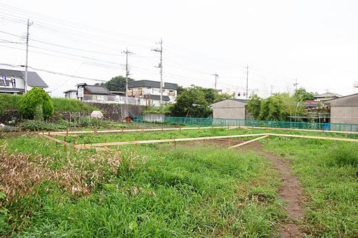 mizumori2.jpg